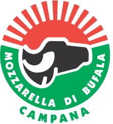 Logo Mozza