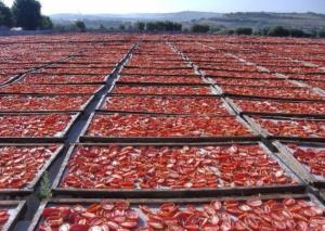 tomates séchées au soleil