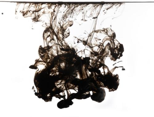 Noir c'est noir… de seiche !