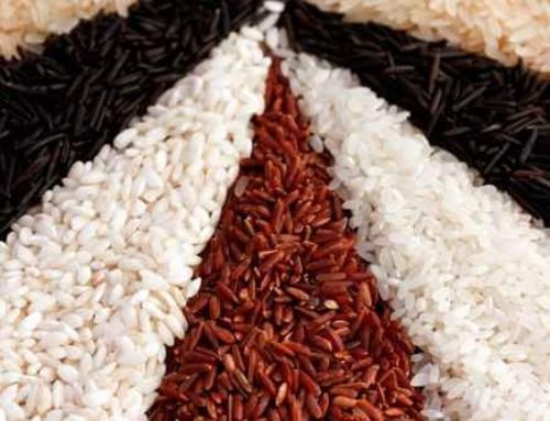 Comment choisir le riz pour risotto ?