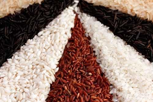 Comment choisir son riz à risotto