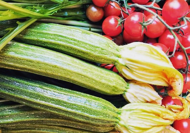 Légumes bio 530 ettari